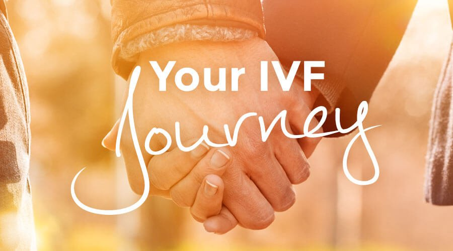 Your IVF Journey